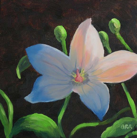 image=Balloon